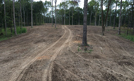 Food Plot - Mulched & Subsoiled