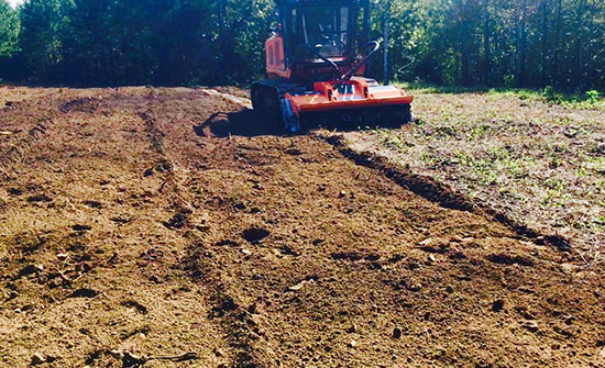 Subsoiled Food Plot