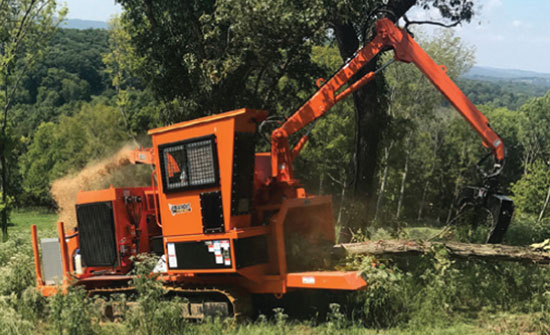The Feller Buncher & Whole Tree Chipper